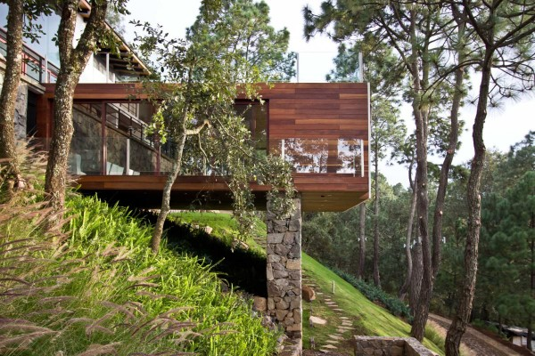The Forest House in Mexico by EMA 2